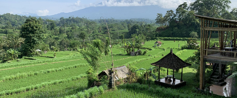 BALI DIARY: My Magical Bali